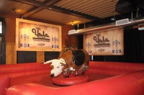 Yale Saloon Bull